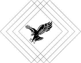 kara-kartal-logo